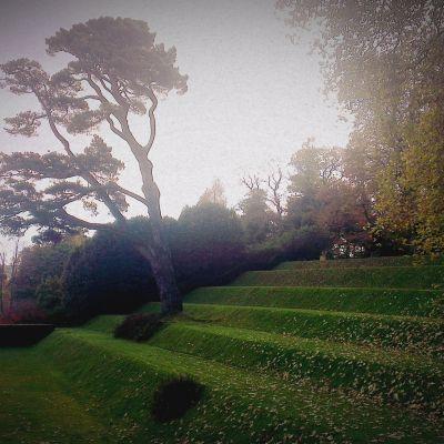 Our Community - Dartington and Totnes